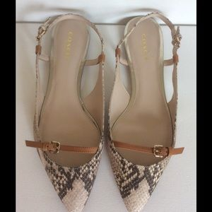 Coach 'Wooster' python slingback flat